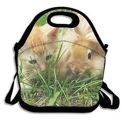 Lightweight Same Color Cat And Rabbit Insulation Lunch Bag G